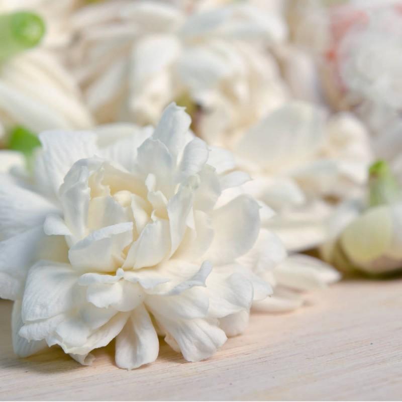 Doftolja till ljustillverkning - Sensual Bloom